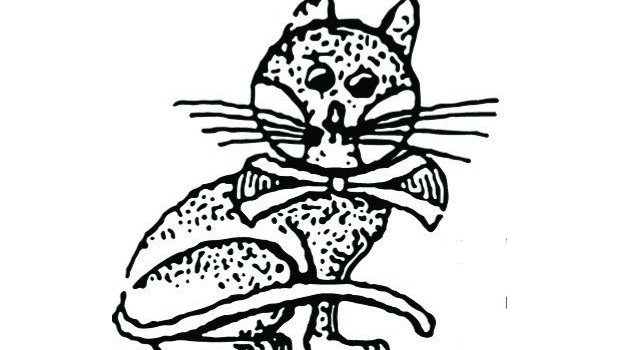 Jirnsumer-Kat