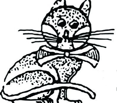 Jirnsumer Kat